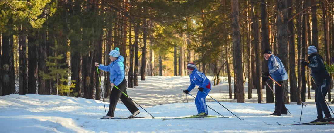 cross coutnry ski