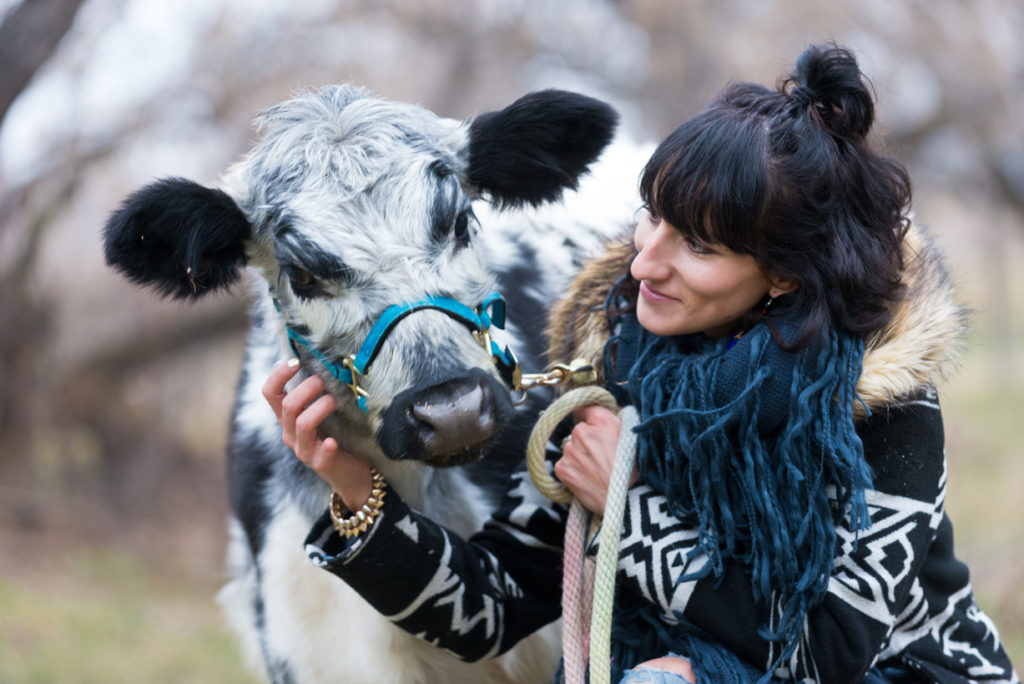 Animal Assisted Therapy at Wild Blue Psychology